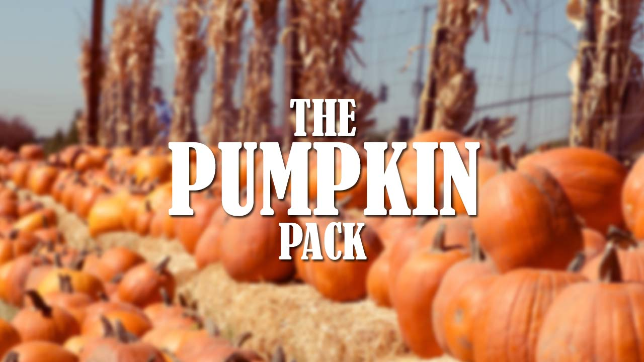 pumpkins and fall stock photography
